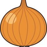 超簡単!旬の新玉ねぎをクックパッドの人気レシピで作ろう!